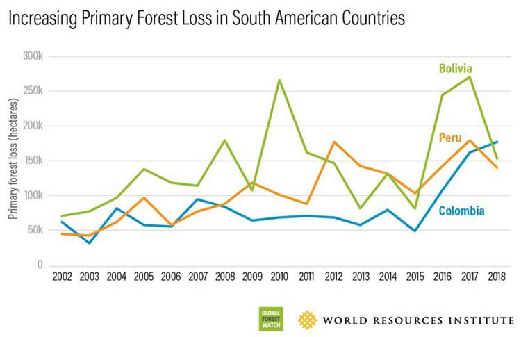 primary forest loss peru 2002 2018