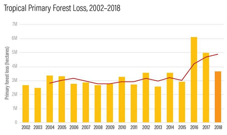 tropical primary forest loss 2002 2018