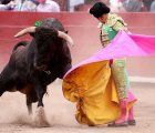 Bullfighting in Peru