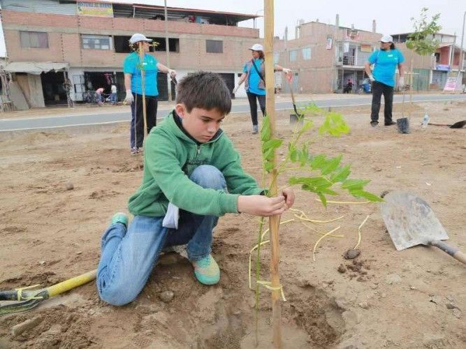 "Planting trees in Lima as part of the ""Planta un arbol nace un vida"" campaign; photo: serpar"